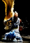 Flamenco Macande - (Spain)