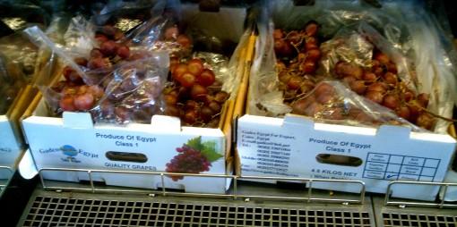 gyppo grapes